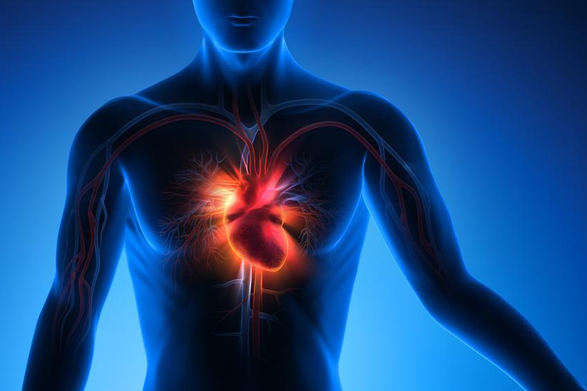 Herzvariabilitätsmessung » Ammerschläger | Dürr | Schlett ...
